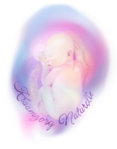 Kraamzorg-Naturelle-1-logo